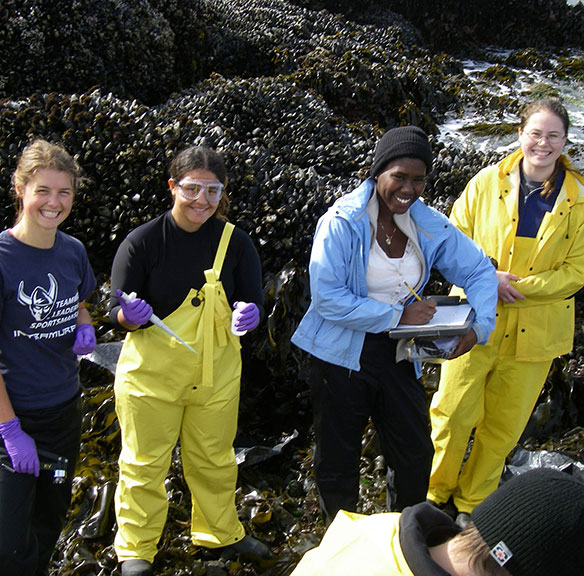 Students doing research in the inter-tidal zone